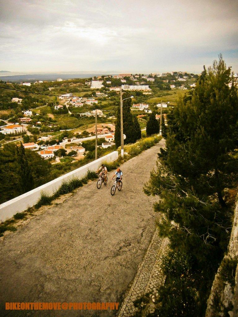 Bike Pics!-466043_385842578134248_1508799251_o.jpg