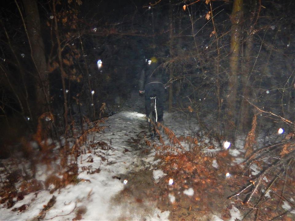 Local Trail Rides-46883224_2260885337489238_3008997587282821120_n.jpg
