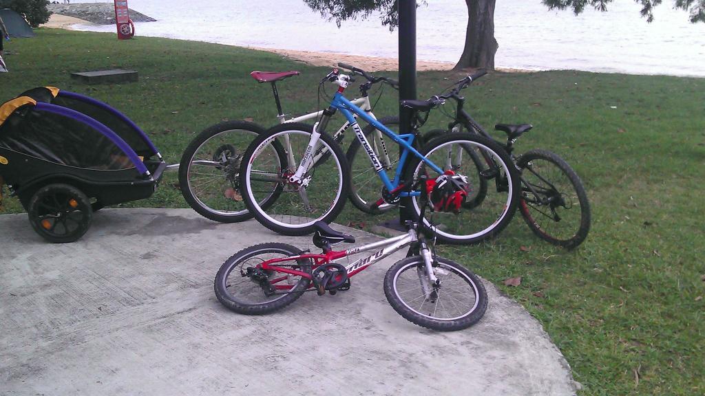 My fleet of bikes-470764_3556685709570_1045536561_3273437_315409738_o.jpg