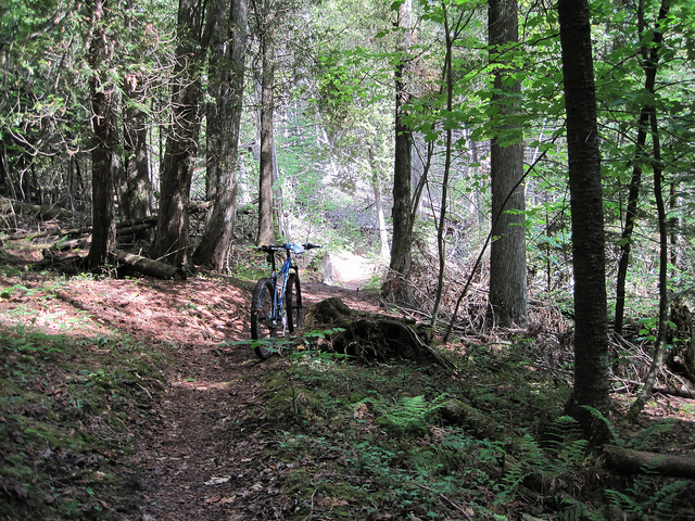 Bike + trail marker pics-4737905125_7287b0eba1_z.jpg