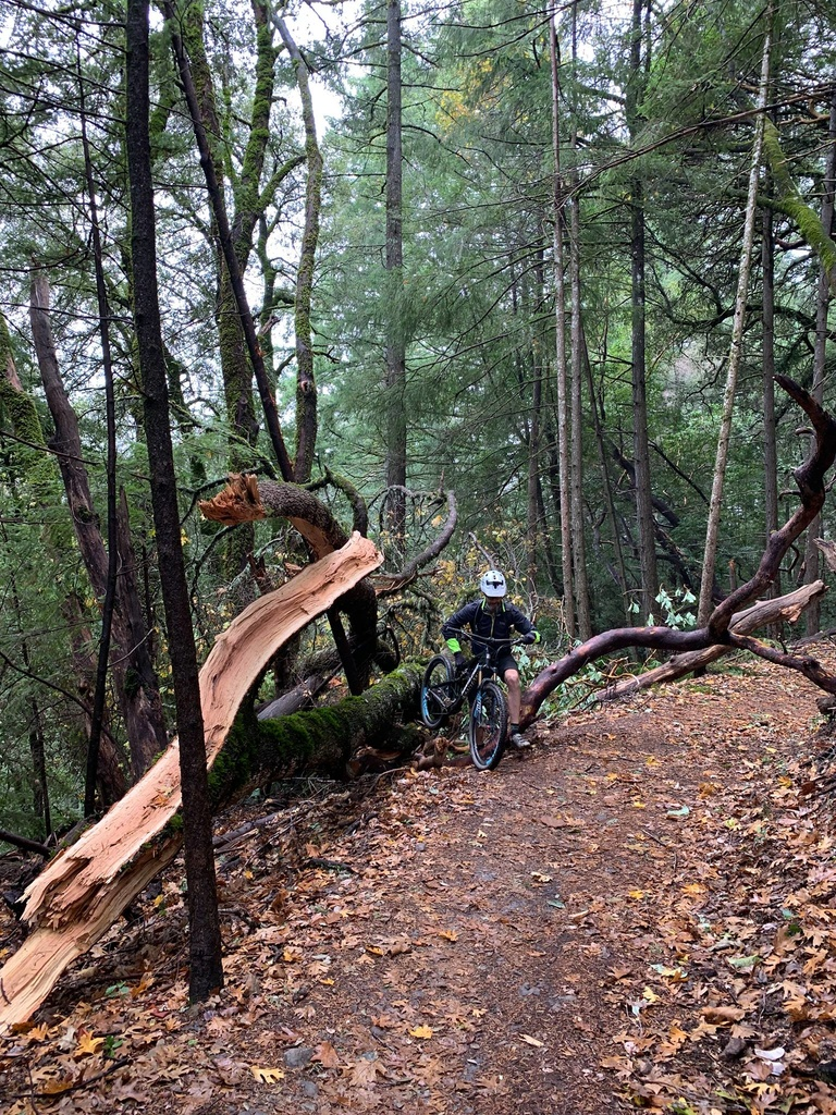 Dec 3-6, 2018 Weekly Ride and Trail Conditions Report-47488949_10155830699791003_6821295560910176256_o.jpg