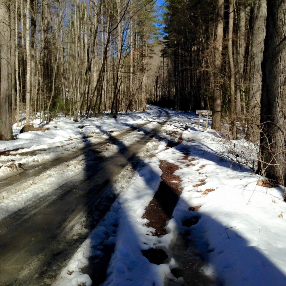 Pisgah Trail Conditions-477a.jpg