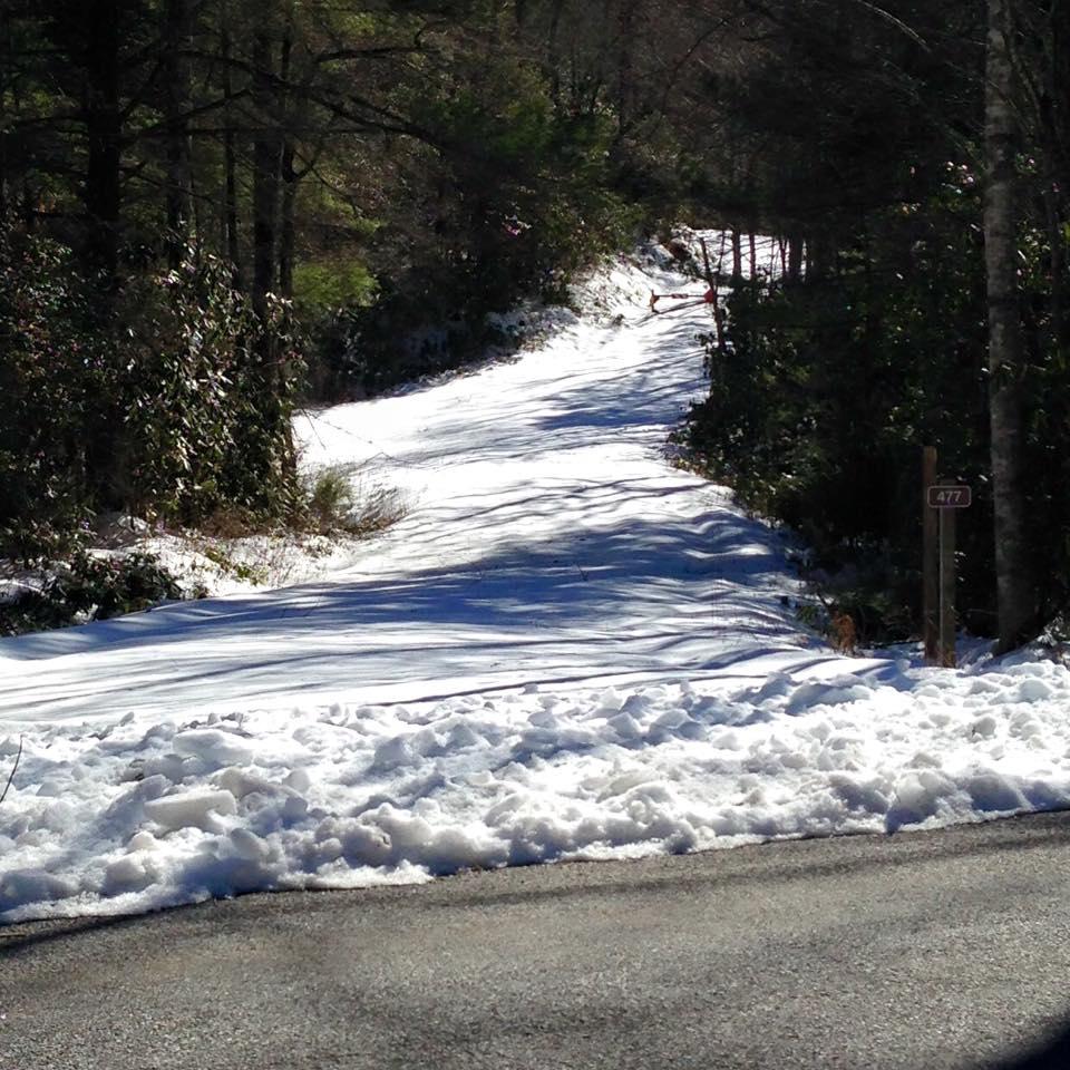 Pisgah Trail Conditions-477b.jpg