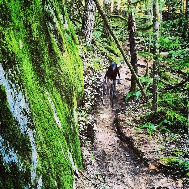 Best Squamish Trails?-482188_4775498262169_439736861_n.jpg