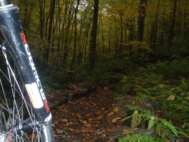 Bike Camping & Singletrack Sampling VT Tour-5.jpg