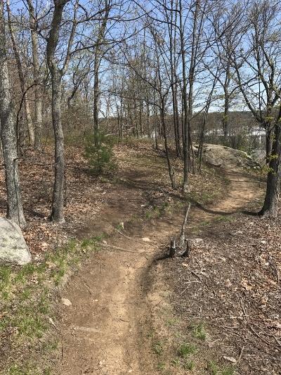 Ongoing trail vandalism, rogue trails at LLF and BBN-50212aa6-8e2c-4597-88b9-584c9e05138d_zpsldp0vlrd.jpg
