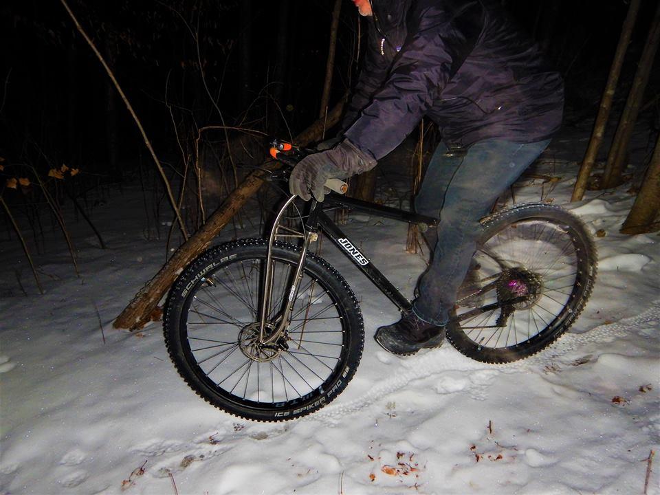 Local Trail Rides-51007193_2305367619707676_7523186864543498240_n.jpg