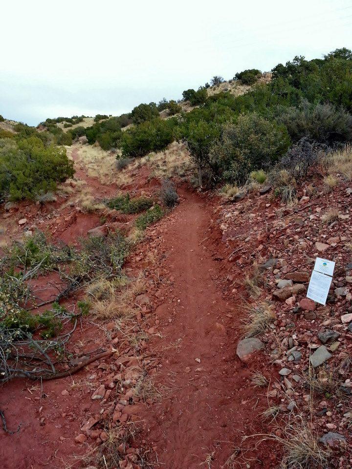 Placitas Area Trail Association-547018_135172879966376_991212785_n.jpg