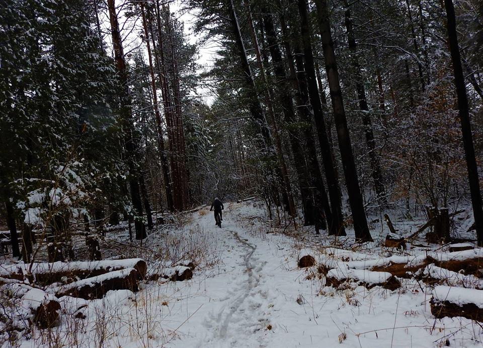Local Trail Rides-55933697_2346696938908077_5708943093315665920_n.jpg