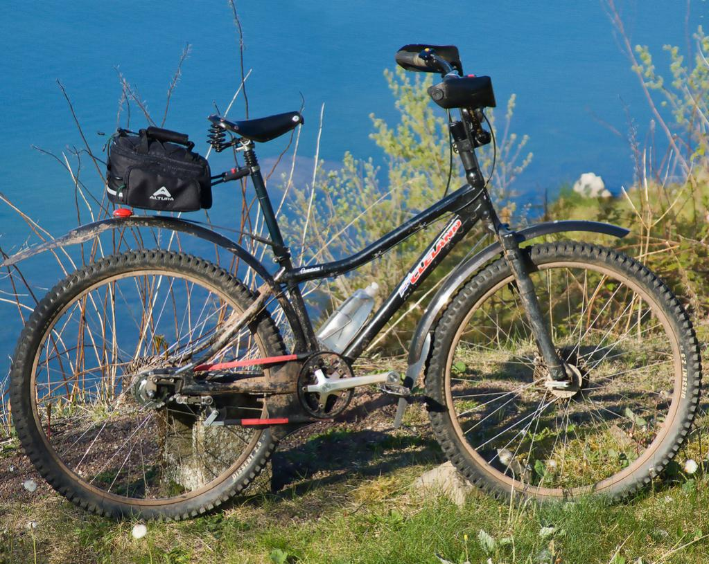 Cleland: The original big wheeled off-road bicycle?-5668723545_55fcbcb86c_b.jpg