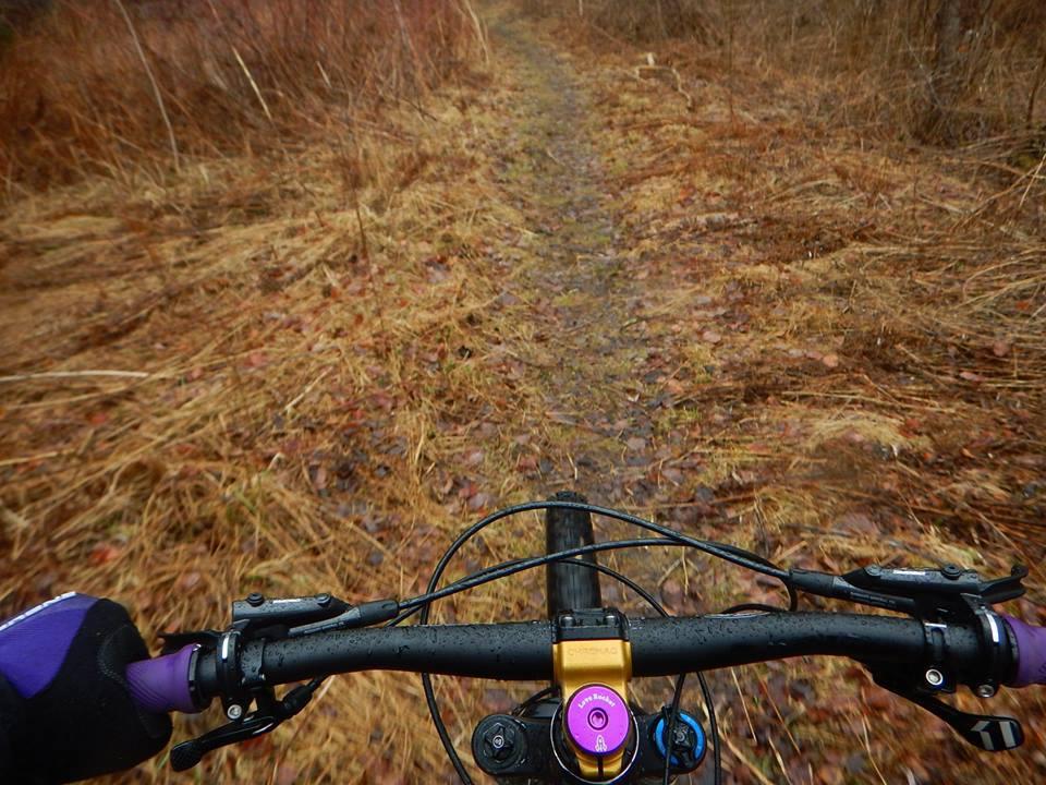 Local Trail Rides-56966769_2356016941309410_7391927119174959104_n.jpg