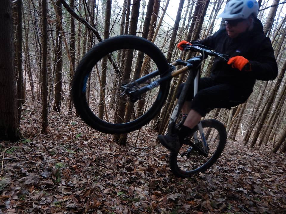 Local Trail Rides-57023966_2355479274696510_5423853820021047296_n.jpg