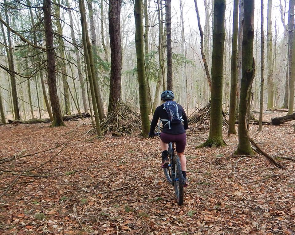 Local Trail Rides-57511444_2360710987506672_2558252791181082624_n.jpg