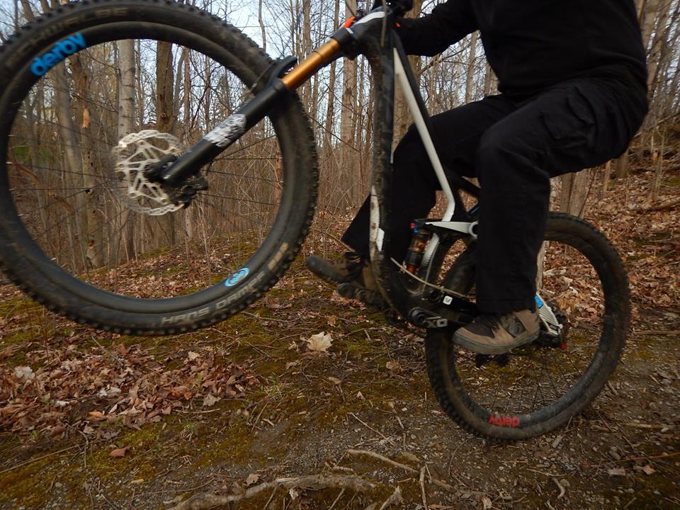 Local Trail Rides-58883181_2364804763763961_5841934058396844032_n.jpg