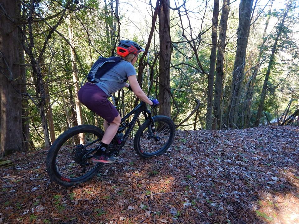 Local Trail Rides-59285350_2370238463220591_8223109084585394176_n.jpg