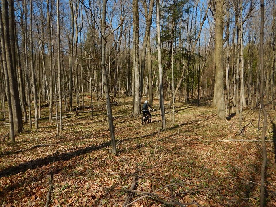 Local Trail Rides-59375143_2370242926553478_4582381984847757312_n.jpg