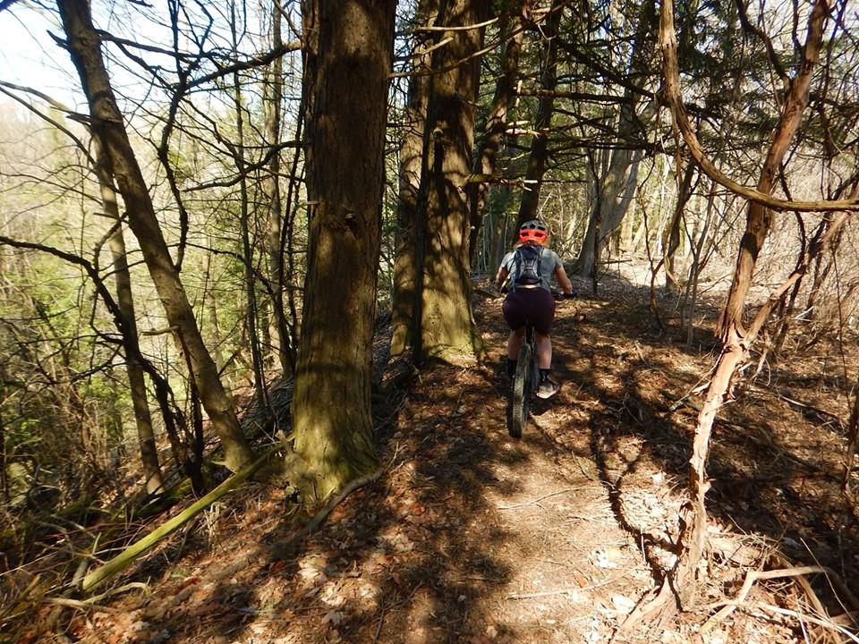 Local Trail Rides-59663434_2370242646553506_4920442644582105088_n.jpg
