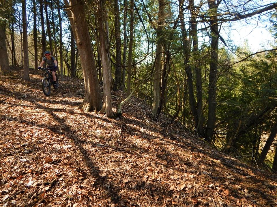 Local Trail Rides-59746680_2370237566554014_2484923929773211648_n.jpg