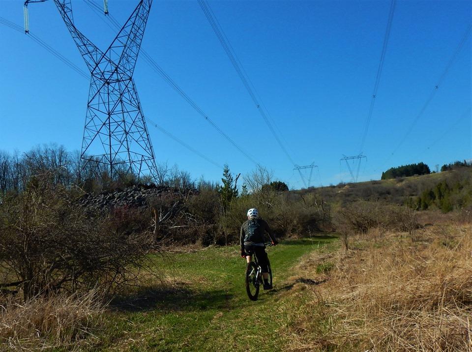 Local Trail Rides-59839890_2370244039886700_8693667376572399616_n.jpg