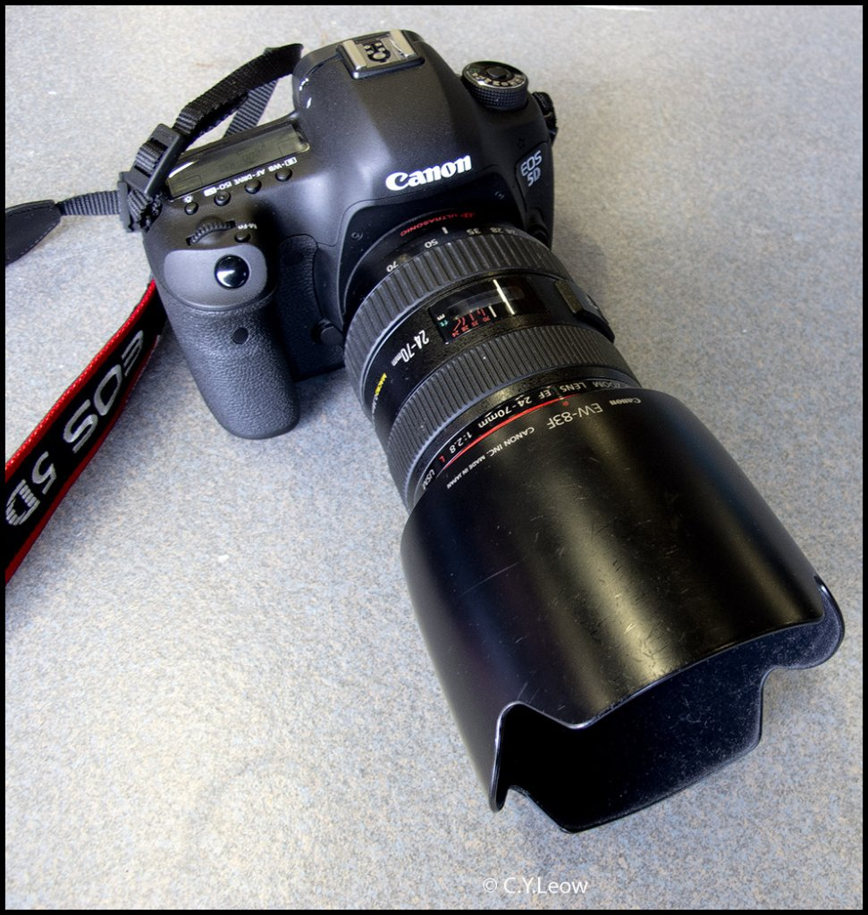 Method for bringing the SLR on the trail-5d_mk3.jpg