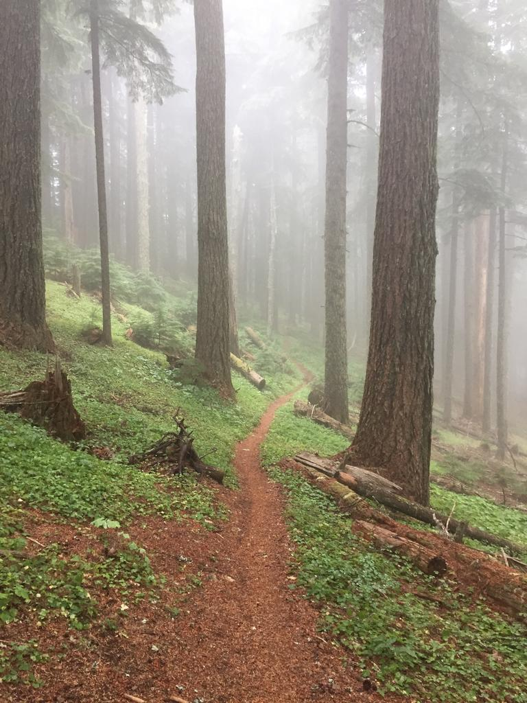 September 10-13, 2018 Weekly Ride and Trail Conditions Report-5e7256f5-1586-4805-8b69-ff7073fee70d.jpg
