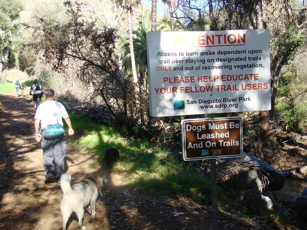Park rangers can't write citations for off leash dogs?-600_13145023.jpg
