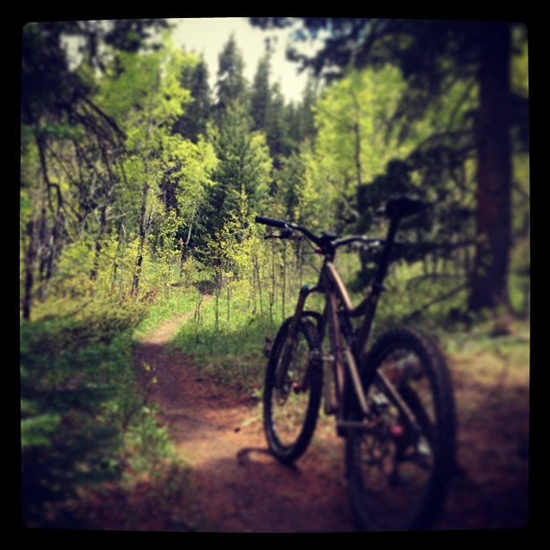 Allow me to rant on how crappy the ridng is in Boulder.-601925_10201169504417915_2093378489_n.jpg