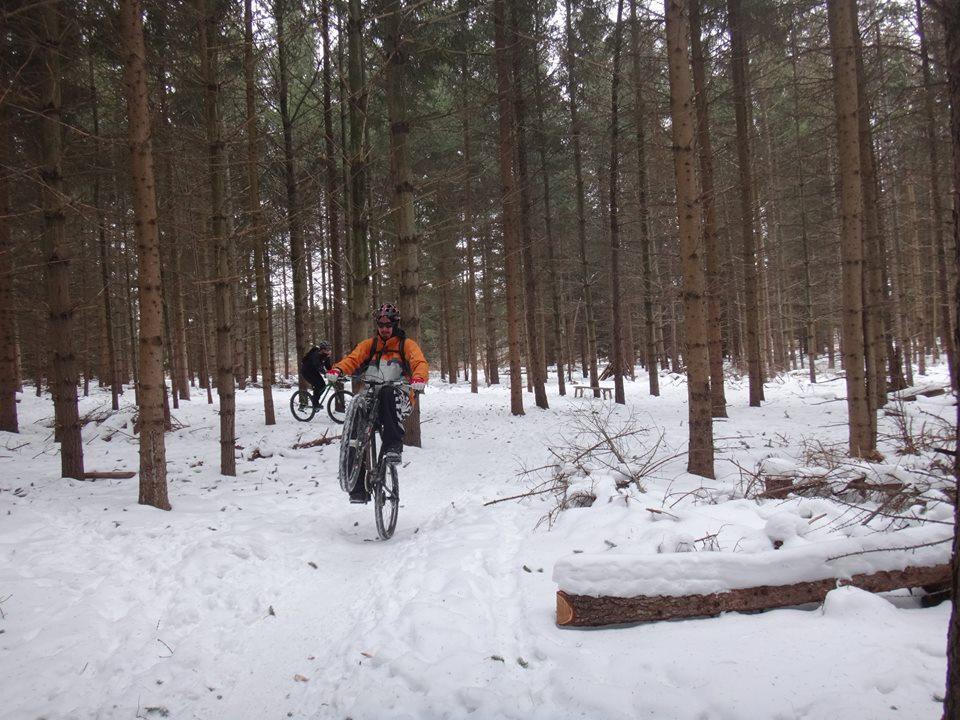 Local Trail Rides-603839_649511095177902_6891978687175349510_n.jpg