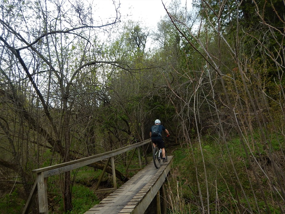 Local Trail Rides-60500088_2380125458898558_6574156768966868992_n.jpg