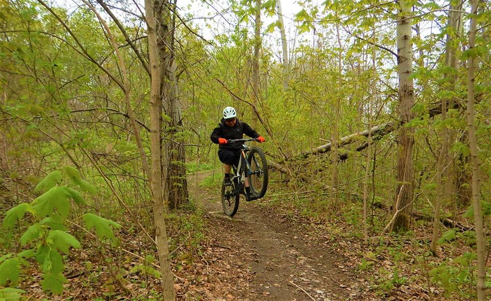Local Trail Rides-60900884_2380806805497090_4152947558043353088_n.jpg
