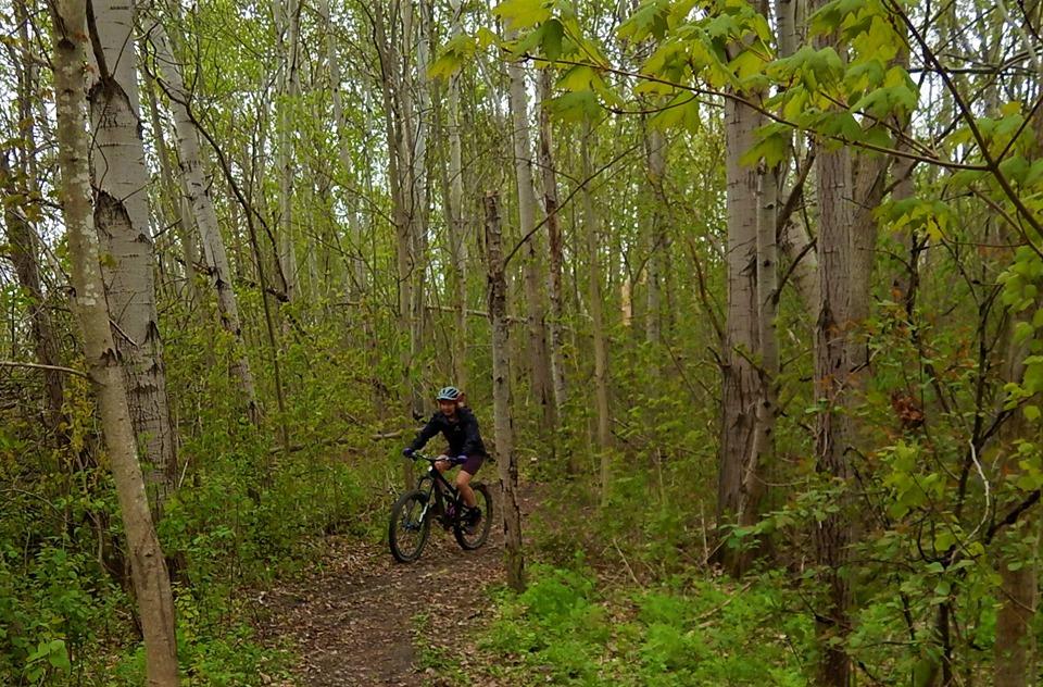 Local Trail Rides-61124105_2380814605496310_201077973523103744_n.jpg