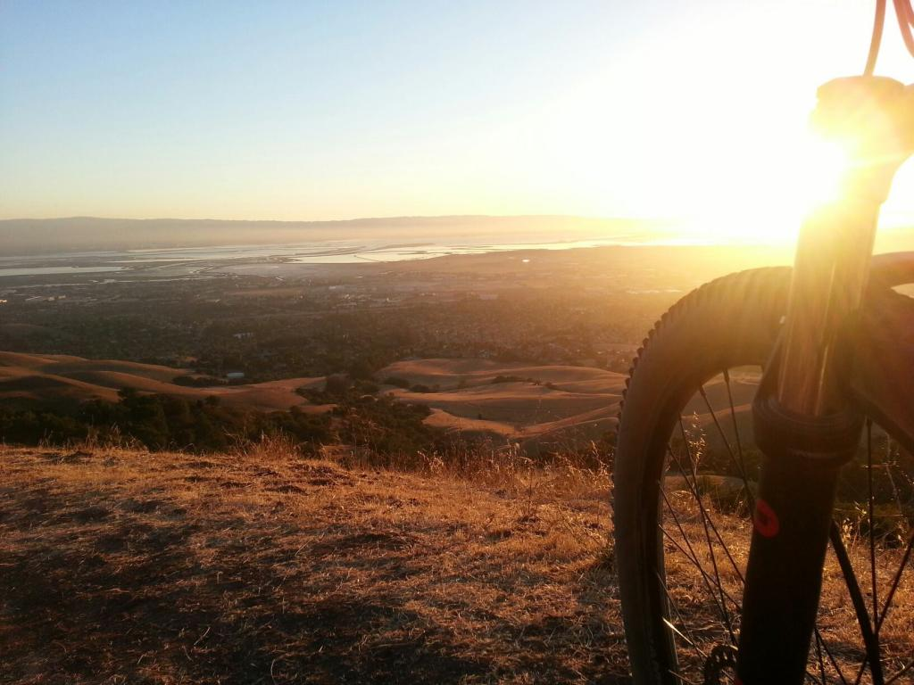 What did You do today on your mountain bike?-615189_429457507106553_5669830_o.jpg