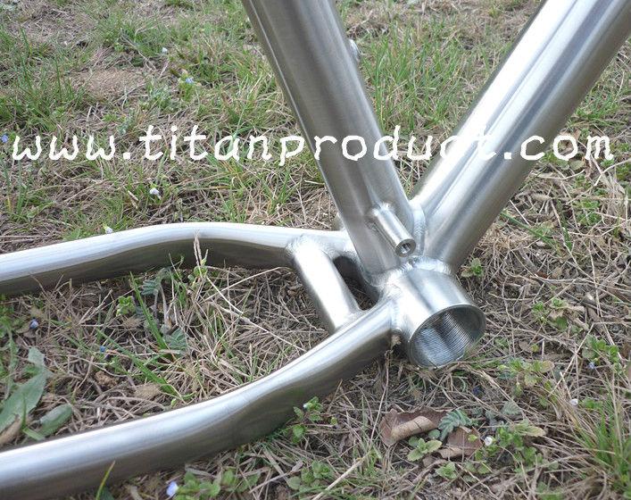 Asian ti frame-625784606_740.jpg