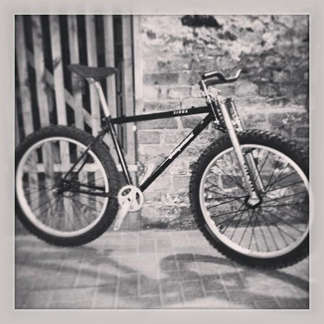 Less 'Beast'ly Fat Bike-62c5f440758911e3b003124d21716300_8.jpg
