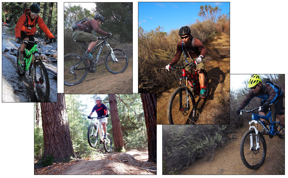 650b Collage -  Action Shots