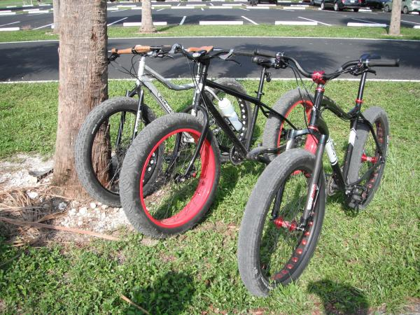 South Florida Fat Bikers?-6554.jpg