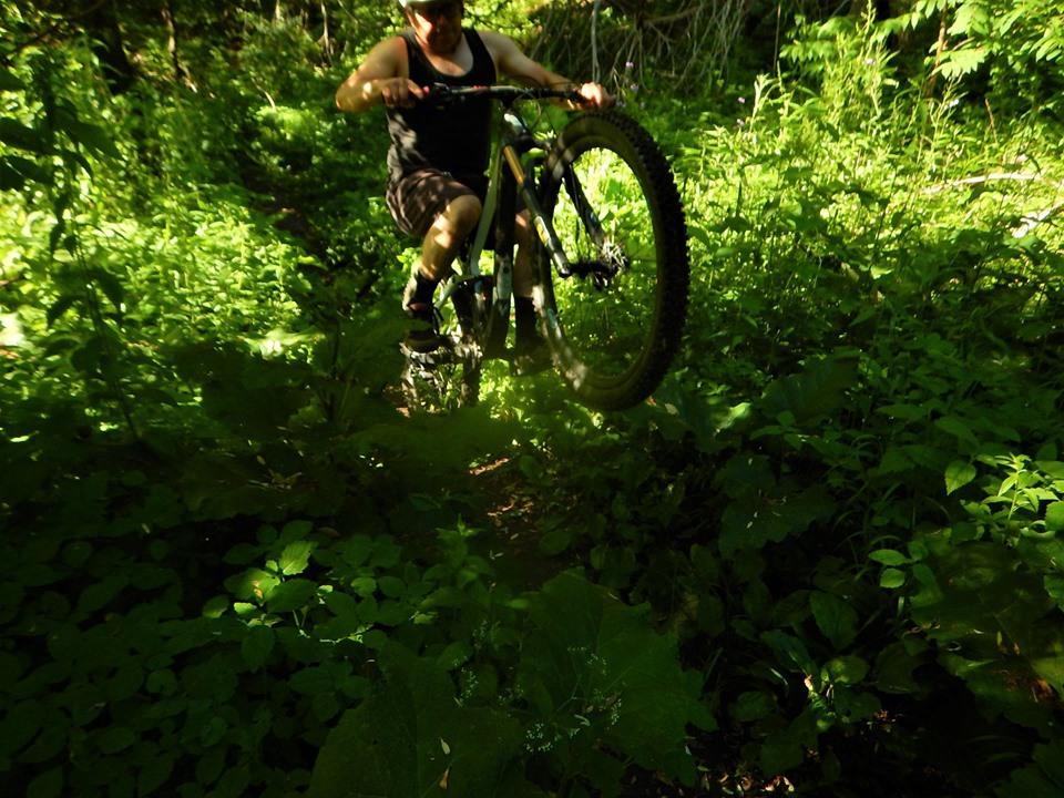 Local Trail Rides-65828099_2411649869079450_8947845654273589248_n.jpg