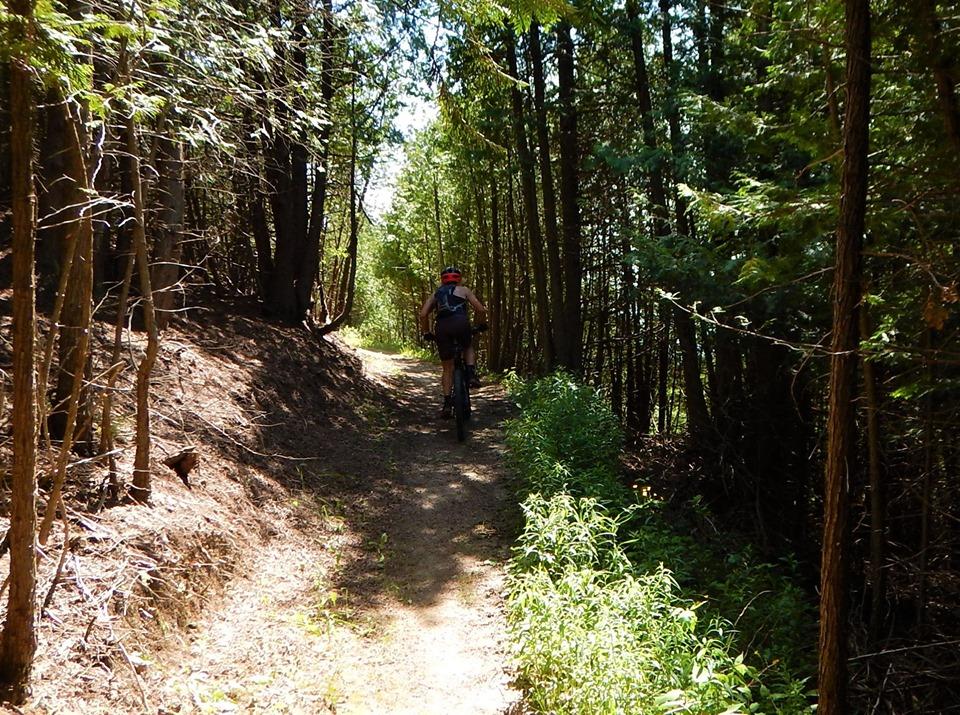 Local Trail Rides-65874638_2413277112250059_1799253618105253888_n.jpg