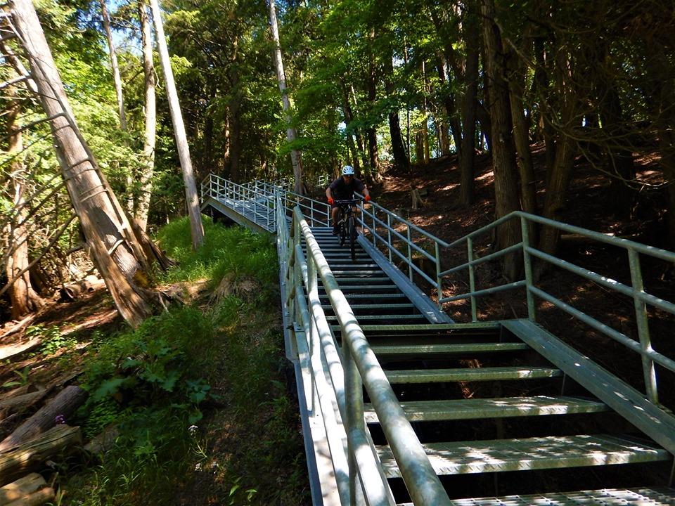 Local Trail Rides-65902918_2413276598916777_7124832294266732544_n.jpg