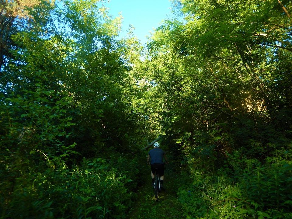Local Trail Rides-66097873_2412502632327507_6981401522114396160_n.jpg