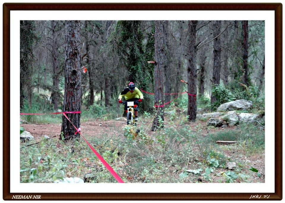 Some pic from israel AM race in Maanit forest-66709_583902191634678_204227294_n.jpg