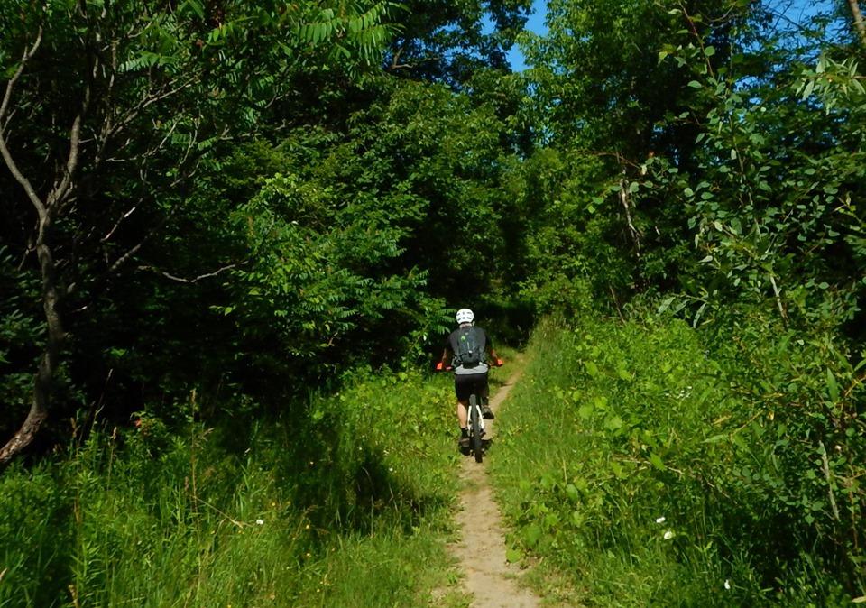 Local Trail Rides-66842277_2422824734628630_5661994526630215680_n.jpg