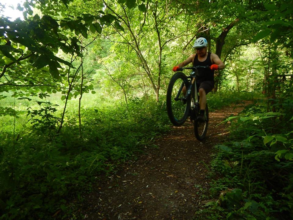 Local Trail Rides-67095113_2427322727512164_6600654878937186304_n.jpg