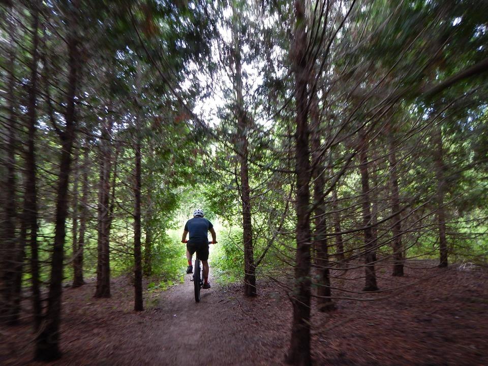 Local Trail Rides-67705439_2438833593027744_9056694895946760192_n.jpg