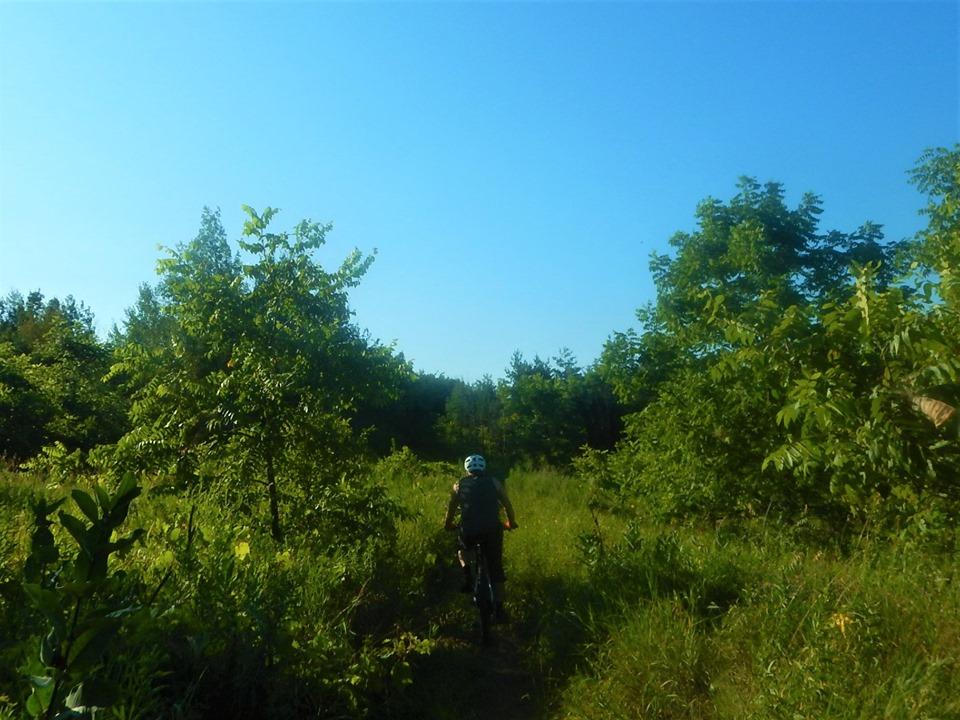 Local Trail Rides-67793361_2438064876437949_6636197623097196544_n.jpg