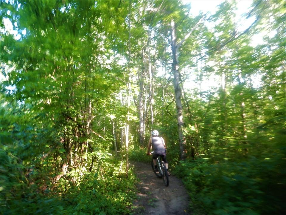 Local Trail Rides-67909617_2438074193103684_7366232747909578752_n.jpg