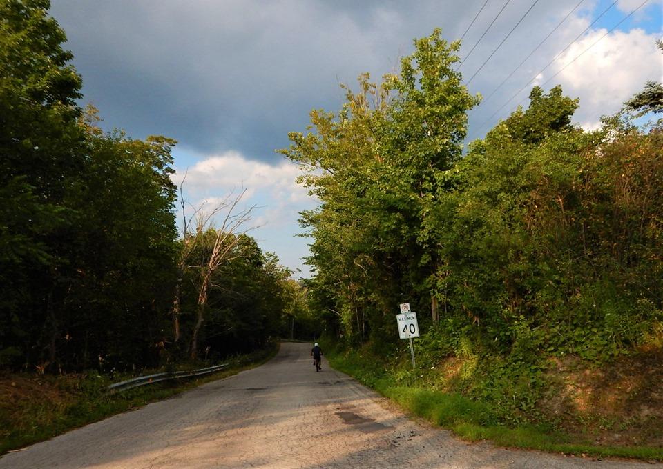 Local Trail Rides-68425343_2438834373027666_8282527049432694784_n.jpg