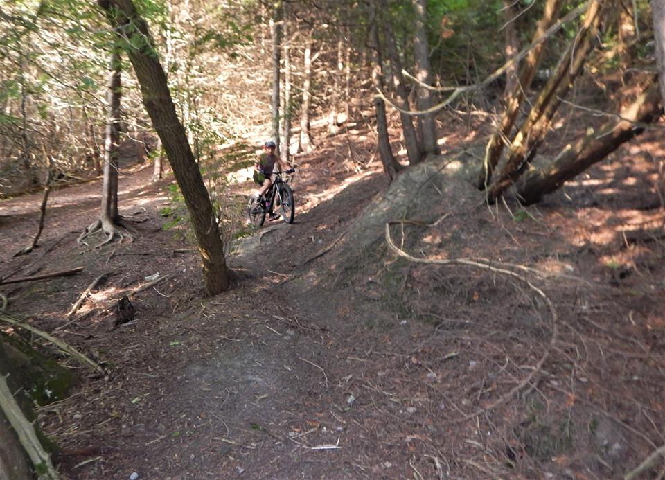 Local Trail Rides-69164047_2454866601424443_3392852322198487040_n.jpg