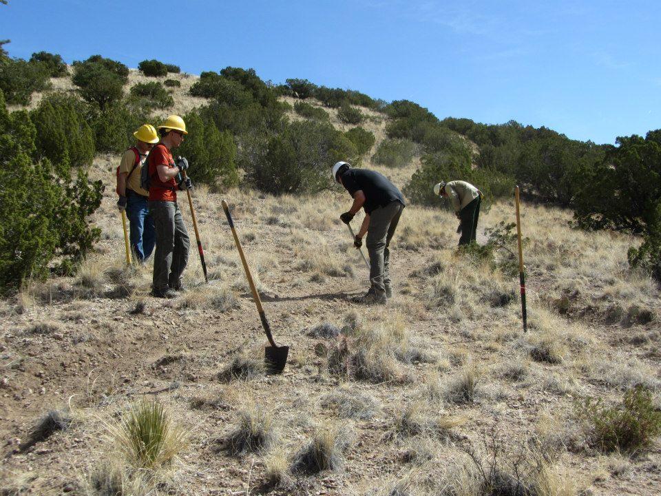 Placitas Trail Work-69410_178470208969976_1893164811_n.jpg