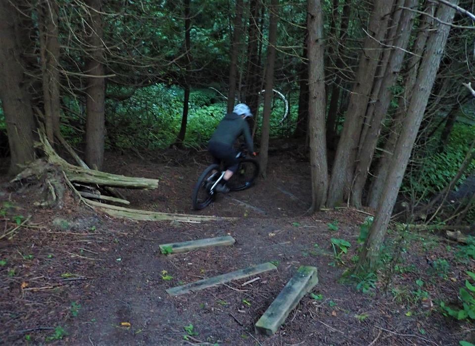 Local Trail Rides-69473331_2463719190539184_8655088451311370240_n.jpg
